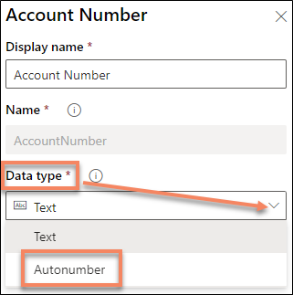 autonumber data type